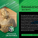 Ingress Character Card Basileus Maximus 2016